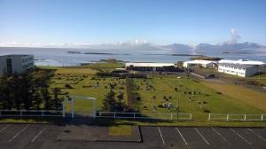Hafnarkirkjugarður